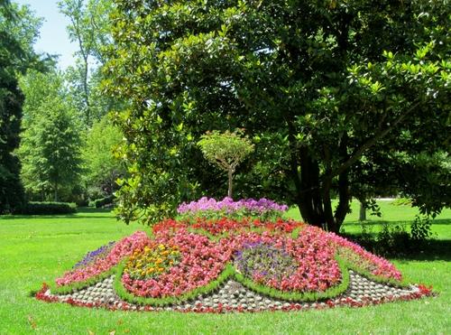 Aiuola a collinetta dizy foto for Alberi da giardino con fiori